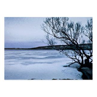 ATC congelado del lago Tarjeta Personal