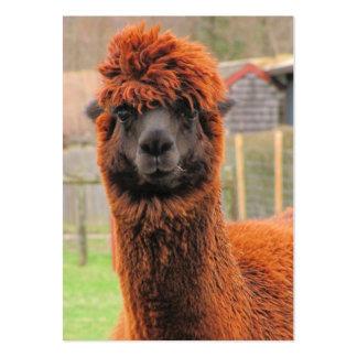ATC curioso del ~ de la alpaca Tarjetas De Visita Grandes
