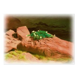 ATC de la caverna de la datura Tarjetas De Visita Grandes