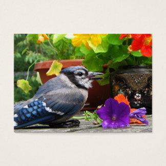 ATC del arrendajo azul y de las flores Tarjetas De Visita Grandes
