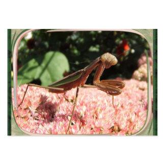 ATC del ~ de la mantis religiosa Tarjetas De Visita Grandes