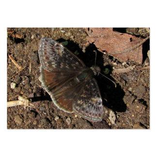 ATC del de la mariposa de Duskywing Tarjeta De Negocio
