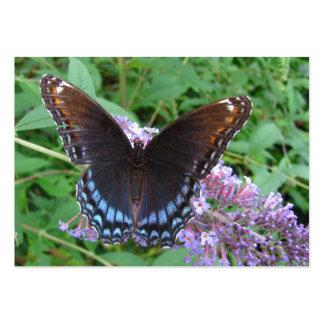 ATC del de la mariposa del azul y de Brown Plantilla De Tarjeta De Negocio