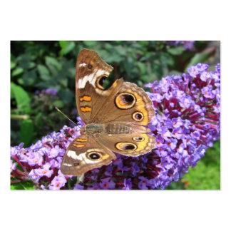 ATC del de la mariposa del castaño de Indias Tarjeta De Visita