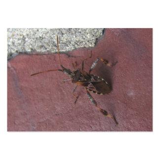 ATC del ~ del insecto de asesino 134 Tarjetas De Visita Grandes