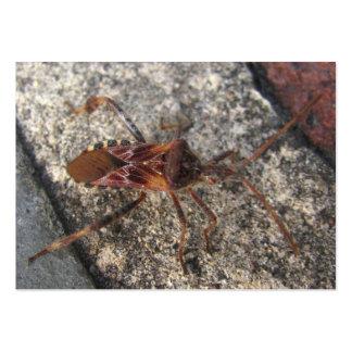 ATC del ~ del insecto de asesino Tarjetas De Visita Grandes