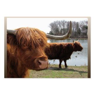 ATC escocés del del ganado de la montaña Tarjetas Personales