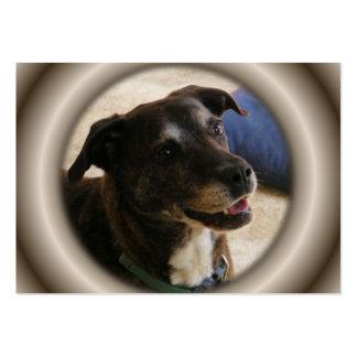 ATC feliz del ~ del perro Tarjeta De Negocio