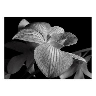 ATC negro y blanco del flor de la orquídea Tarjeta De Visita