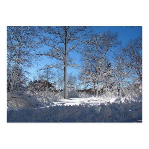 ATC pegajoso del ~ de la nieve 106 Tarjetas De Visita Grandes
