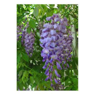 ATC púrpura del de las glicinias V Tarjeta De Visita