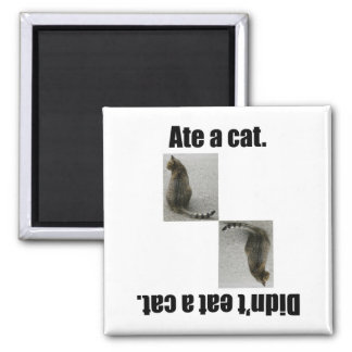 Ate A Cat. 2 Inch Square Magnet