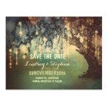ate la reserva rústica del árbol de las luces la p tarjeta postal