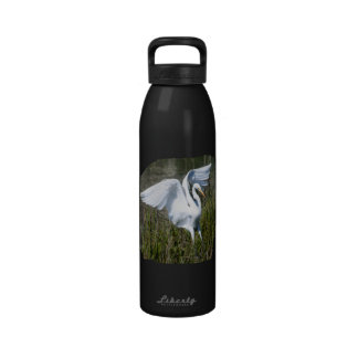 Aterrizaje blanco del Egret en pantano Botallas De Agua