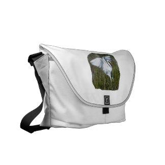 Aterrizaje blanco del Egret en pantano Bolsas Messenger