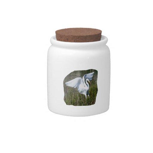 Aterrizaje blanco del Egret en pantano Jarras Para Caramelos