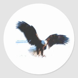 Aterrizaje calvo de American Eagle Pegatina Redonda