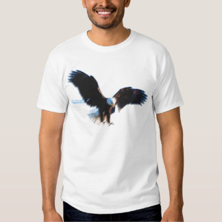 Aterrizaje calvo de American Eagle Polera