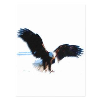 Aterrizaje calvo de American Eagle Postales