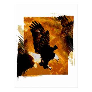 Aterrizaje calvo de American Eagle Postal