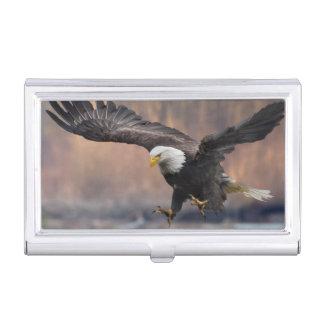 Aterrizaje de Eagle calvo Cajas De Tarjetas De Negocios