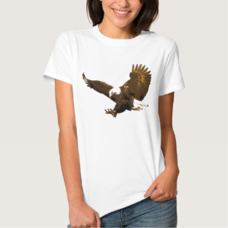 Aterrizaje de Eagle Playeras