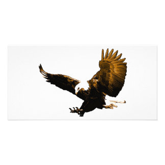 Aterrizaje de Eagle Tarjetas Fotograficas