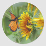 Aterrizaje de la mariposa pegatinas redondas