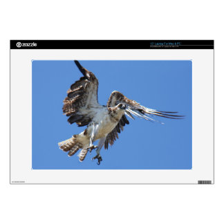 Aterrizaje de Osprey Portátil Calcomanía