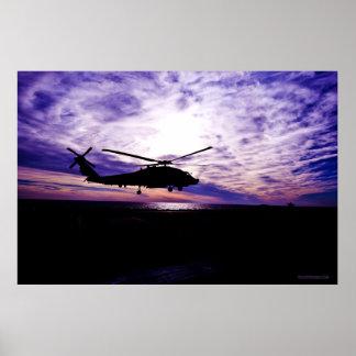Aterrizaje del halcón del mar en la puesta del sol póster