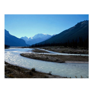 Athabasca River, Icefield Parkway, Alberta, Canada Postcard
