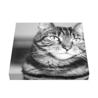 Athena in Black and White Canvas Print