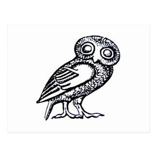 Athena's Owl Postcard