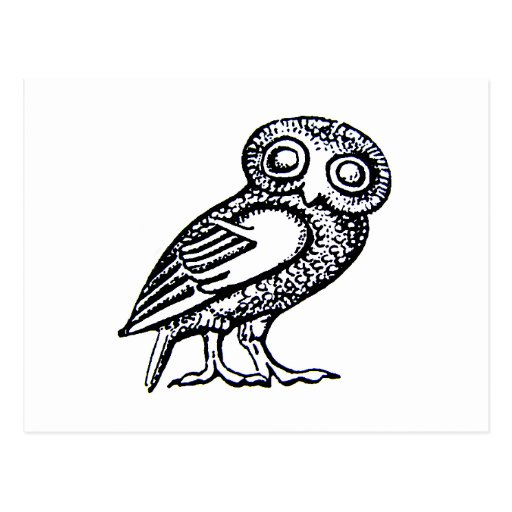 Athena's Owl Postcards