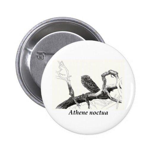 Athene noctua. pin redondo 5 cm