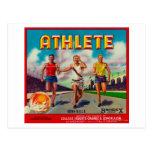 Athlete Brand Citrus Crate Label Post Card