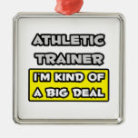 Athletic Trainer .. I'm Kind of a Big Deal Ornaments