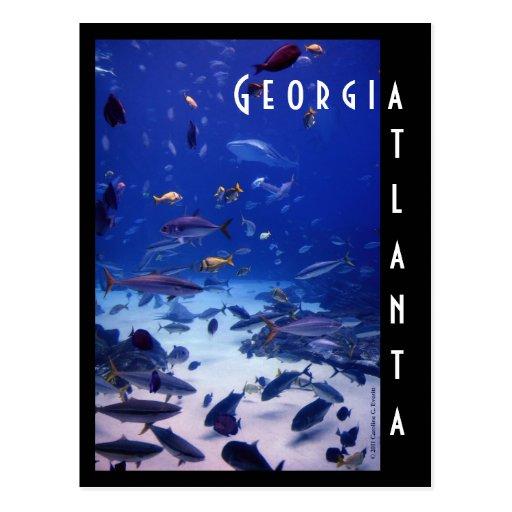 Atlanta Aquarium, Georgia Post Card