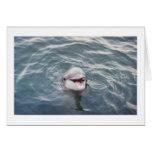atlantic bottlenose dolphin greeting card