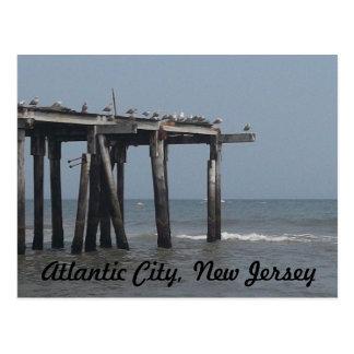 Atlantic City Beach with Birds Postcard