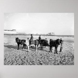 Atlantic City New Jersey Pony Rides Canvas Print
