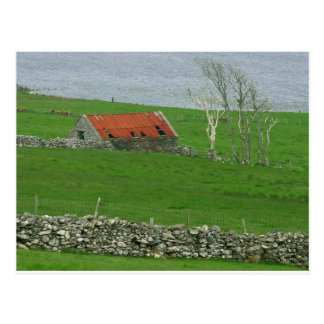Atlantic Coast Pasture, Ireland Postcard