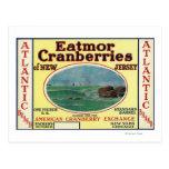 Atlantic Eatmor Cranberries Brand Label Postcard