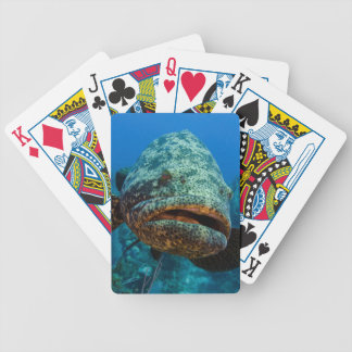 Atlantic Goliath Grouper Bicycle Playing Cards
