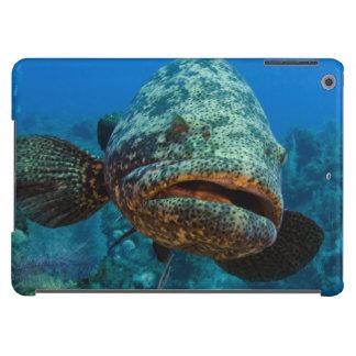 Atlantic Goliath Grouper iPad Air Cover
