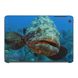 Atlantic Goliath Grouper iPad Mini Case