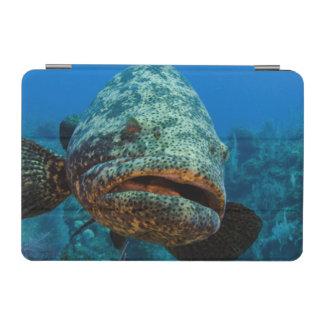 Atlantic Goliath Grouper iPad Mini Cover
