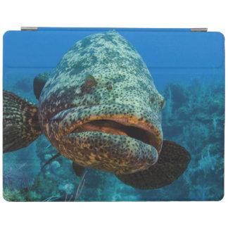 Atlantic Goliath Grouper iPad Cover