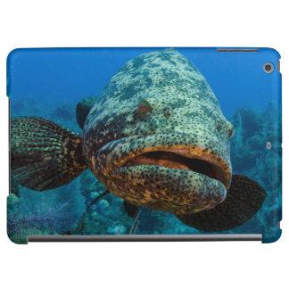 Atlantic Goliath Grouper Cover For iPad Air