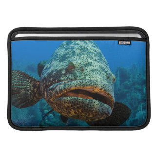 Atlantic Goliath Grouper MacBook Sleeve